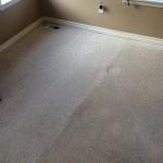 Carpet Cleaning Coral Springs 0c014f5e1c2e8de16df29c139f318bc8