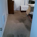 Carpet Cleaning Coral Springs 0ce945225eda36543303235c439afb07
