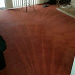 Carpet Cleaning Coral Springs 12e693d8a46ab513a76cd4a49aef1394
