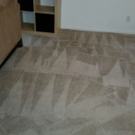 Carpet Cleaning Coral Springs 1c7d1dc817134bdbc9edf6f7be1dd4d7