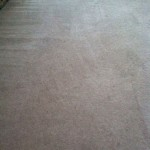 Carpet Cleaning Coral Springs 26900978f22bbb69942983eb58ffd0eb