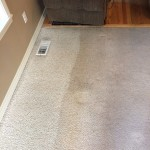 Carpet Cleaning Coral Springs 493c6b9fe804265ba0d13391fae736d8