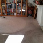 Carpet Cleaning Coral Springs 4db1749219d71fc401b762ecb8d0dbbc