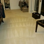 Carpet Cleaning Coral Springs 54e251e9ef4446095c6c2f4ab6be5f49