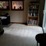 Carpet Cleaning Coral Springs 7c7b84d65cf5949a469093d5b4177e92