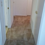 Carpet Cleaning Coral Springs 7dfd19148626f2dc8718ed6f7982bed1