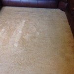 Carpet Cleaning Coral Springs 9518d6a2f57a4bd3a7f8520fbae62506