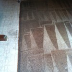 Carpet Cleaning Coral Springs 9db1dc822e773bfb6e2178e10be997ba