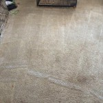 Carpet Cleaning Coral Springs FL IMG955685
