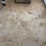Carpet Cleaning Coral Springs FL IMG956059