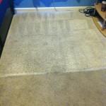 Carpet Cleaning Coral Springs FL c2bbc48b2aa762fb819c250cd8dcf13d