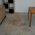 Carpet Cleaning Coral Springs FL f3f97bd6fc2dbd658feb739e8bb00ce1