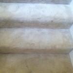 Carpet Cleaning Coral Springs FL fa38a9e202a9acf82412fef7f46e4ee0
