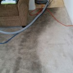 Carpet Cleaning Coral Springs a0f8ff5a6a0fcc67f33176bb7a5db1cf