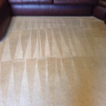 Carpet Cleaning Coral Springs b7258561f933a80232cead9f2e355d1a