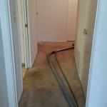 Carpet Cleaning Coral Springs c1bd1e31bc069a3339d7b0dcd0fa92d4