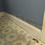 water damage repair Coral Springs FL  IMG_0279
