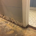 water damage repair Coral Springs FL  IMG_0283